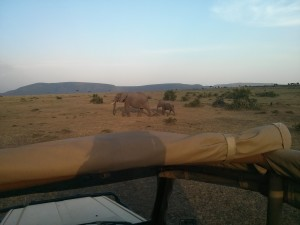 Game Drive at Fairmont Safari Club in Masai Mara Kenya