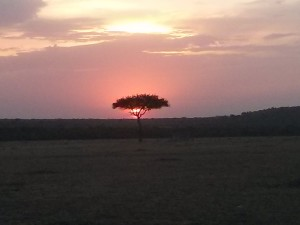 Sunset at Fairmont Safari Club in Masai Mara Kenya